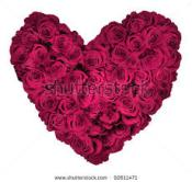 HEART FLOWERS.FUSCHIA